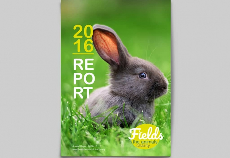 fields-annual-report-3-min